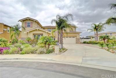 Riverside Single Family Home For Sale: 16904 Ridge Cliff Drive