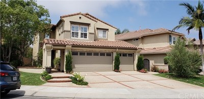 Laguna Niguel Single Family Home For Sale: 27991 Milt Circle