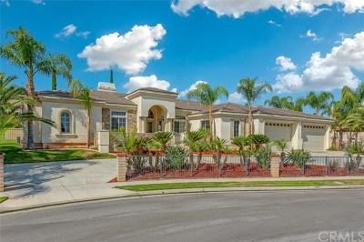 Corona Single Family Home For Sale: 566 C L Fleming Circle