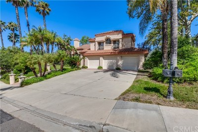 San Dimas Single Family Home For Sale: 1159 Calle Amapola