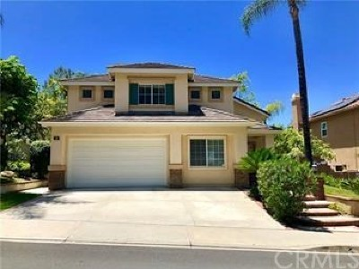 Aliso Viejo Single Family Home For Sale: 33 Surfbird Lane