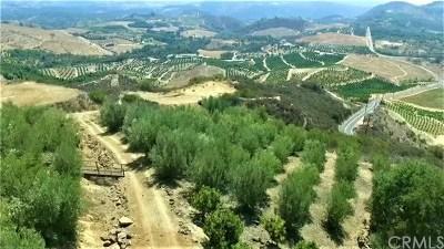 Temecula Residential Lots & Land For Sale: La Villa
