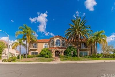 San Dimas Single Family Home For Sale: 1609 Calle Cristina