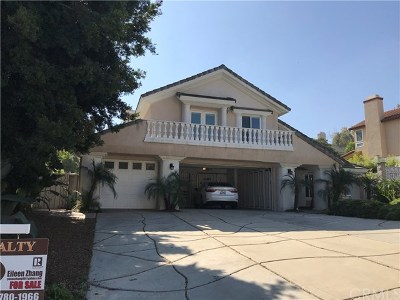 Chino Hills Single Family Home For Sale: 2199 Woodhollow Lane