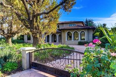 Arcadia Single Family Home For Sale: 224 W Longden Avenue