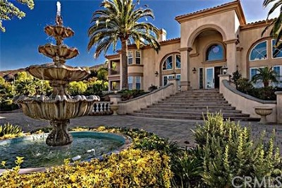 Beaumont, Corona, Hemet, Lake Elsinore, Menifee, Moreno Valley, Murrieta, Perris, Riverside, San Jacinto, Temecula Single Family Home For Sale: 1060 Prairie Circle