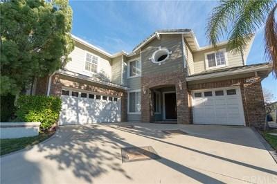 Yorba Linda Single Family Home For Sale: 20210 Thagard Way