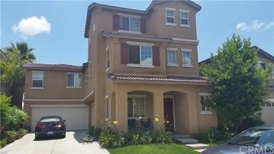 Murrieta Single Family Home For Sale: 39737 Sherwood Union Lane