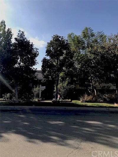 Anaheim Single Family Home For Sale: 321 S Rosebay Street