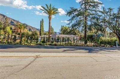Sierra Madre Single Family Home For Sale: 520 N Michillinda Ave