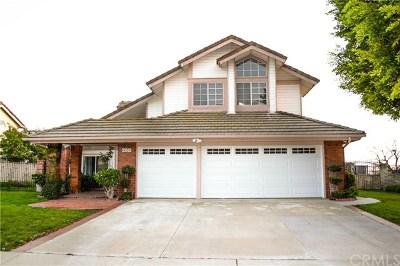 Walnut Single Family Home For Sale: 21042 Granite Wells Drive