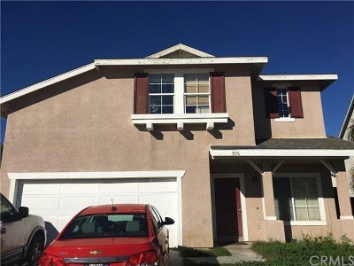 Hemet Single Family Home For Sale: 3376 Double Butte Street