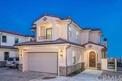 Temple City Single Family Home For Sale: 4869 Glickman Avenue