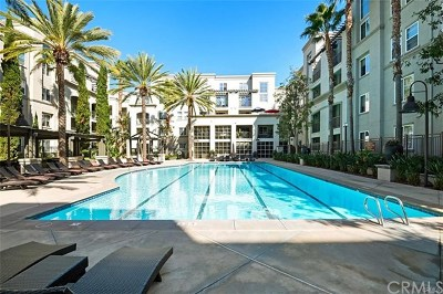 Irvine Condo/Townhouse For Sale: 2366 Scholarship