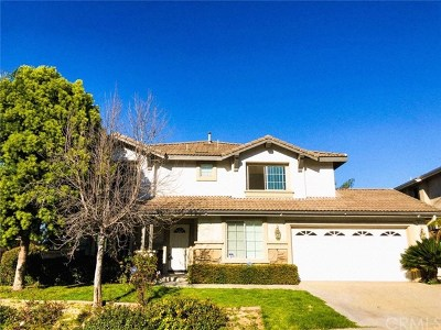 Chino Hills Single Family Home For Sale: 16597 Quail Country Avenue