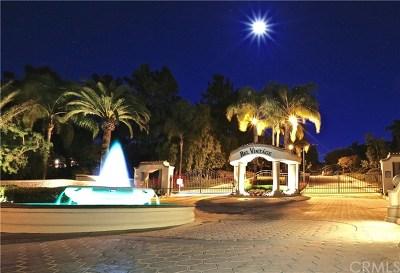 San Dimas Single Family Home For Sale: 205 Calle Moreno