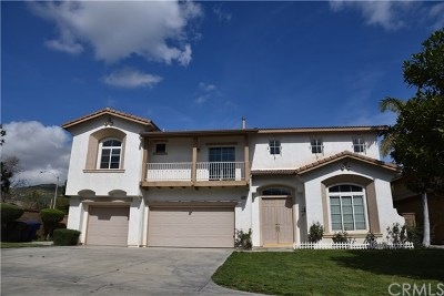 Riverside Single Family Home For Sale: 11587 Trailway Drive