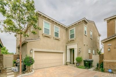 Eastvale Single Family Home For Sale: 13025 Goldenrod Drive