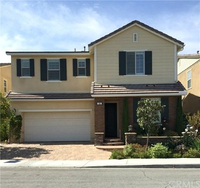 Irvine Single Family Home For Sale: 102 Shadowbrook