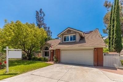 Trabuco Canyon Single Family Home For Sale: 19565 Aliso View Circle
