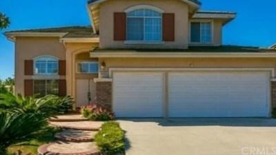 Chino Hills Single Family Home For Sale: 15055 Avenida Compadres