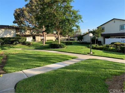 Hacienda Heights Condo/Townhouse For Sale: 1445 Eagle Park Road #185