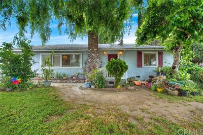 Arcadia Single Family Home For Sale: 1724 Mayflower Avenue