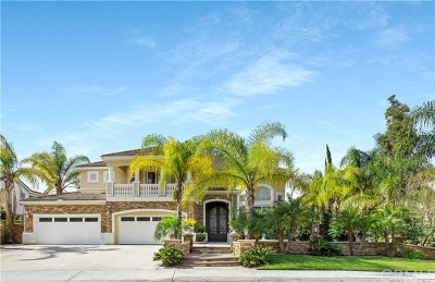 Yorba Linda Single Family Home For Sale: 18700 Seabiscuit Run