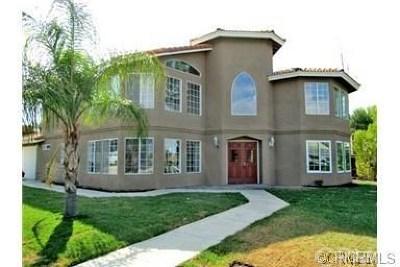 Canyon Lake Single Family Home For Sale: 22485 Canyon Lake Drive S
