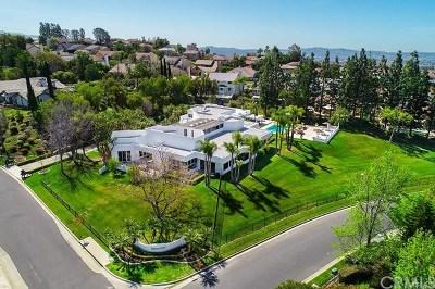 Yorba Linda Single Family Home For Sale: 20624 Mirkwood