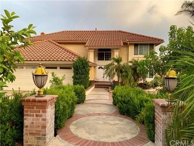 Rancho Cucamonga Single Family Home For Sale: 11021 Seven Pines Drive