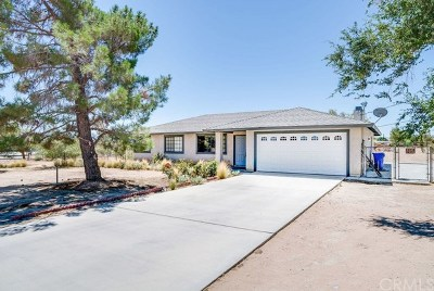 Apple Valley Single Family Home For Sale: 20971 Standing Rock Avenue