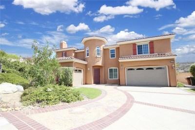 Yorba Linda Single Family Home For Sale: 3978 Sage Ridge Drive