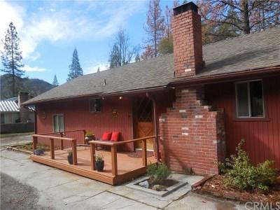 Bass Lake Single Family Home For Sale: 39611 E Idylwild
