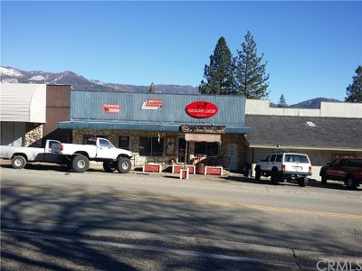 North Fork CA Commercial For Sale: $300,000