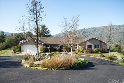 Ahwahnee Single Family Home For Sale: 43180 Knickerbocker Road