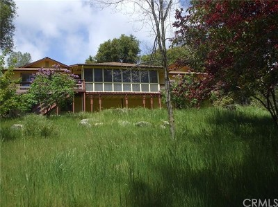 Ahwahnee Single Family Home For Sale: 58208 Road 601