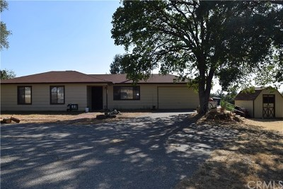 Coarsegold Single Family Home For Sale: 33050 Road 416