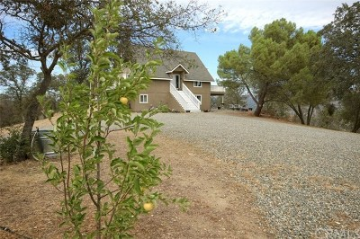 Coarsegold Single Family Home For Sale: 43231 Ellen Mine Road