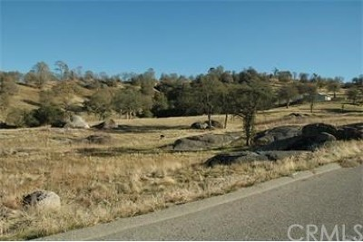 Coarsegold CA Residential Lots & Land For Sale: $95,000