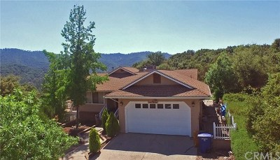 Oakhurst Single Family Home For Sale: 46312 Vista Del Rio Drive
