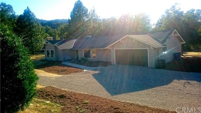 Oakhurst Single Family Home For Sale: 46117 Sutton Drive