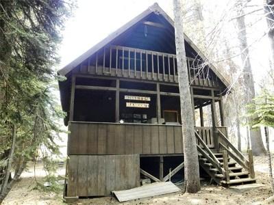 Bass Lake Single Family Home For Sale: 58584 Shuteye Road