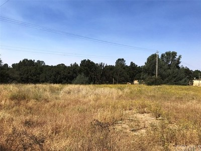 Mariposa Residential Lots & Land For Sale: 3842 Highway 49 S