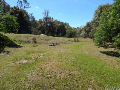 Coarsegold Residential Lots & Land For Sale: Summerhill Lane