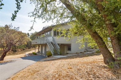 Coarsegold Single Family Home For Sale: 45943 Black Oak Road