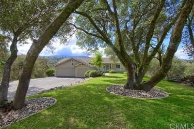 Oakhurst Single Family Home For Sale: 39397 Moonray Lane