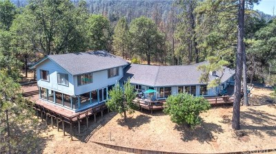 Mariposa County Single Family Home For Sale: 6575 State Highway 140