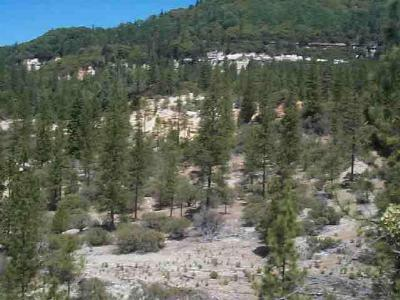 Nevada County Residential Lots & Land For Sale: 20881 Chalk Bluff Road