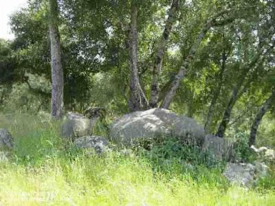 Nevada County Residential Lots & Land For Sale: 13318 Gold Court